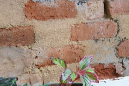Filling the cracks – #Poem #Amwriting